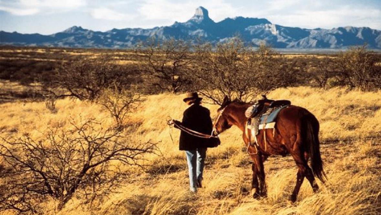 Horse and rider walking in a desert field at Rancho de la Osa