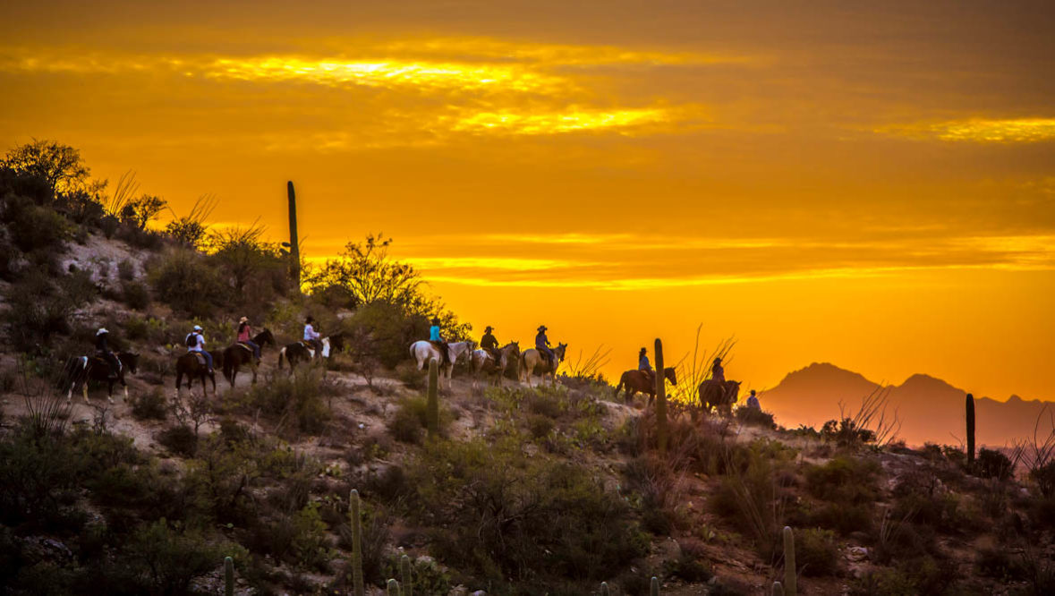 Tanque Verde Ranch trail ride at sunset