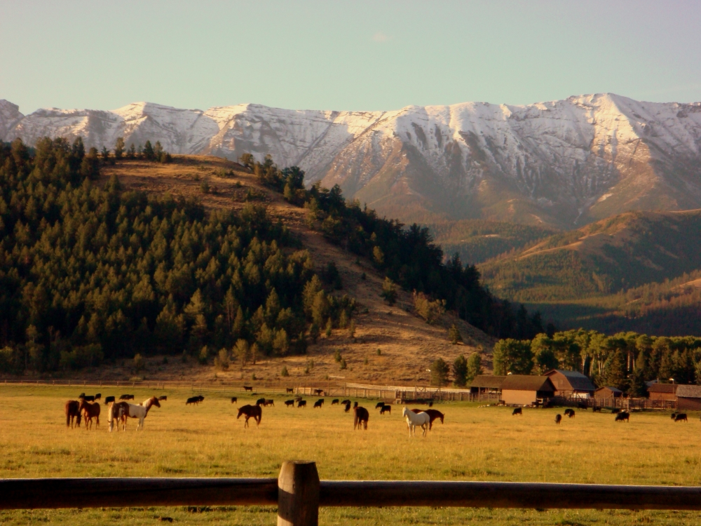 7D Ranch Last Minute Ranch Vacations