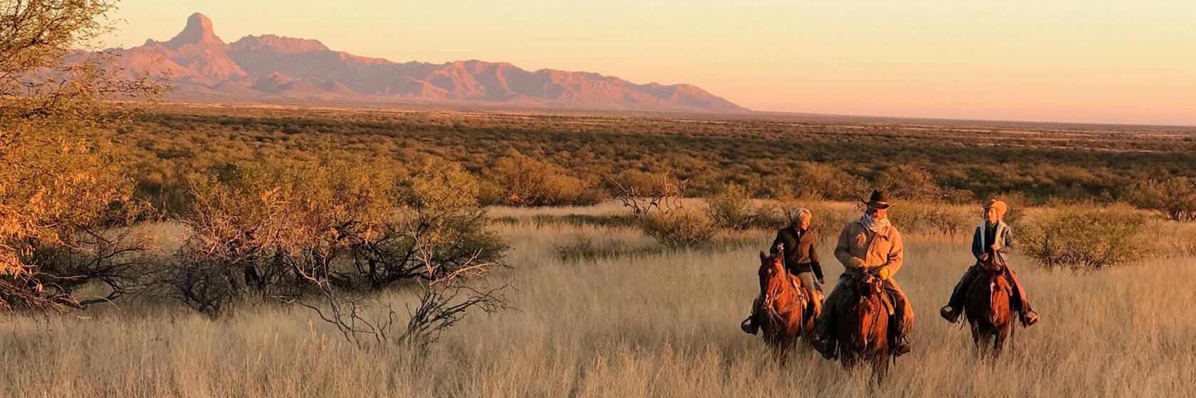 Trail ride in a field at Rancho de la Osa