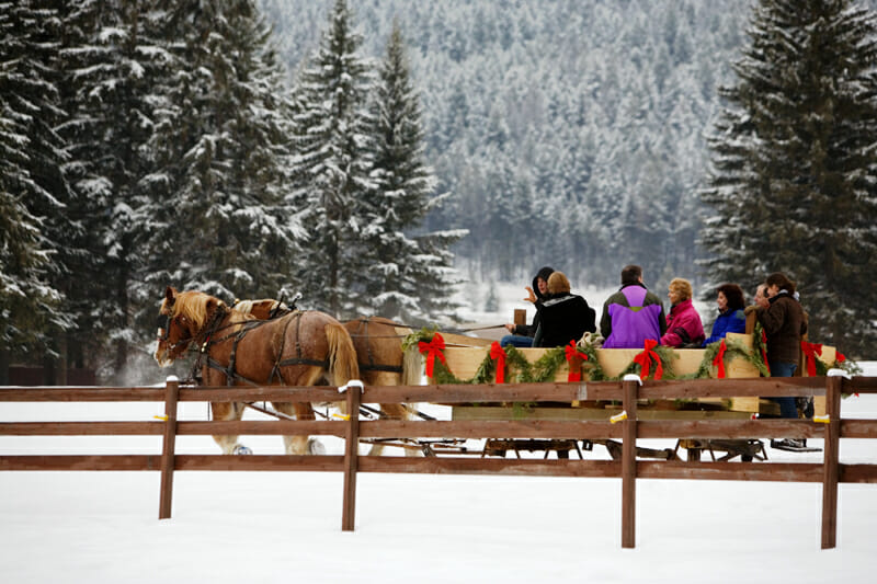 Bar W Sleigh Ride Snow