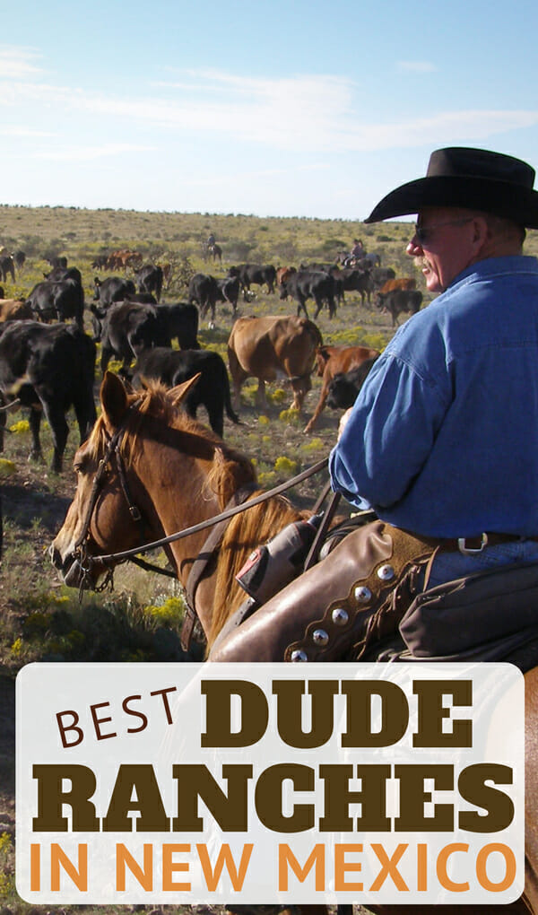 Discover the culture and beauty of the southwest at the best dude ranches in New Mexico. With this strong background of cowboy culture it only make sense that New Mexico is one of the most unique destinations for both working cattle ranch vacations and traditional dude ranches. Participate in rugged cattle drives with campouts or spend hours in the saddle each day exploring the terrain with your own personal guide. And, with a touch of luxury the best dude ranches in New Mexico are sure to offer one of your most memorable vacations yet.