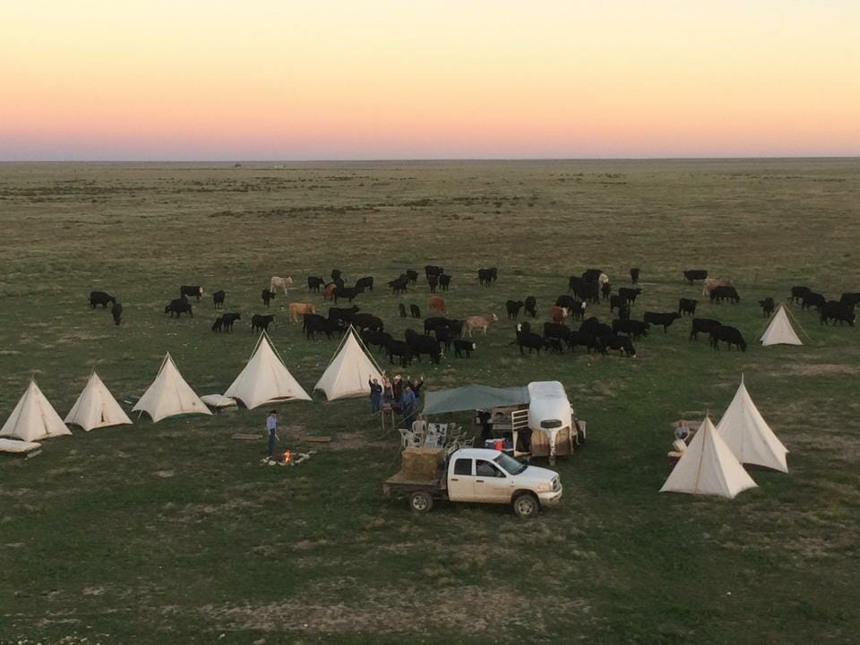 Burnt Well Cattle Drive Best dude ranches in New Mexico