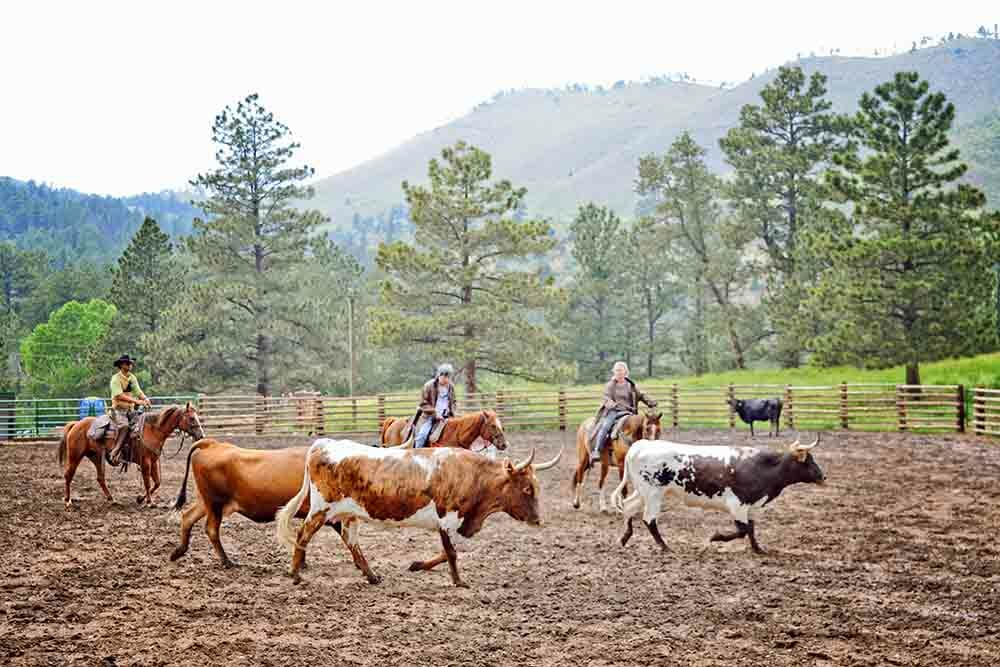 Cherokee Park Ranch Dude Ranches for the Experienced Rider