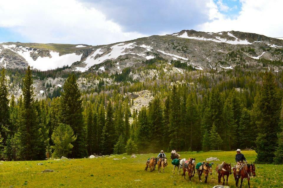 horseback pack trips