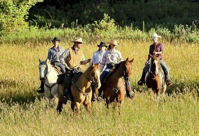 Colorado Trails Advanced Horseback Riding