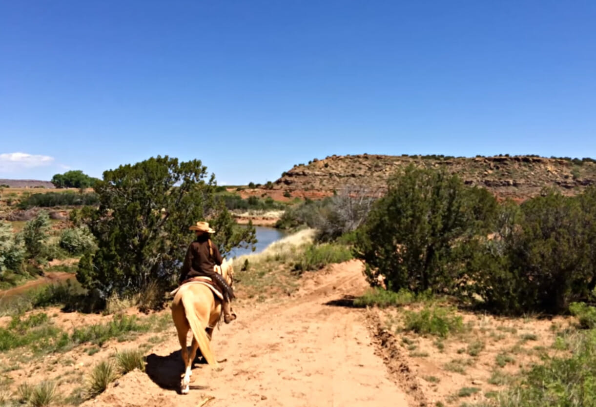 Creek Ranch Best Dude Ranches in New Mexcio