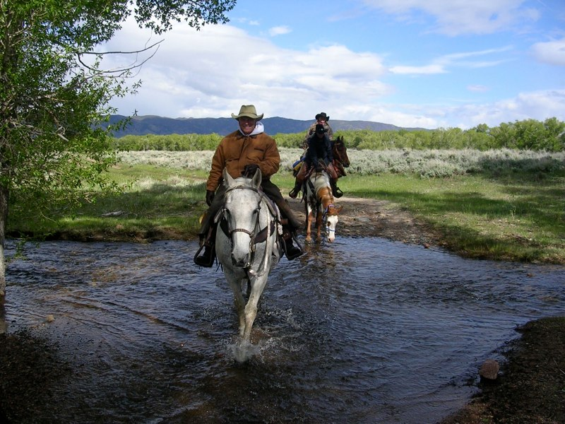 Vee Bar Advanced Horseback Riding