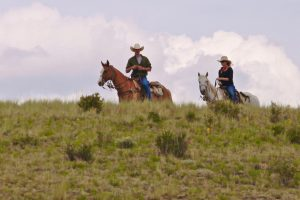 Elk Mountain Couple Hill Side Romance