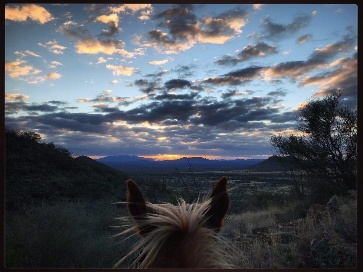 Elkhorn AZ Horseback view dude ranch