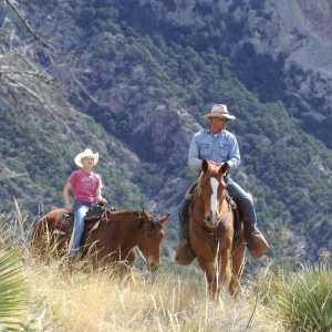 Elkhorn Ranch is a low altitude ranch in Tucson, Arizona
