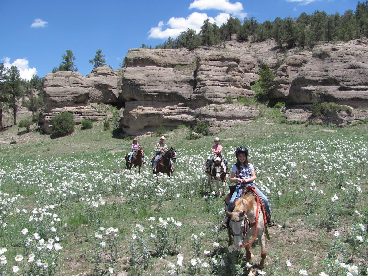 Geronimo Trail Ranch Kid Flowers Trail
