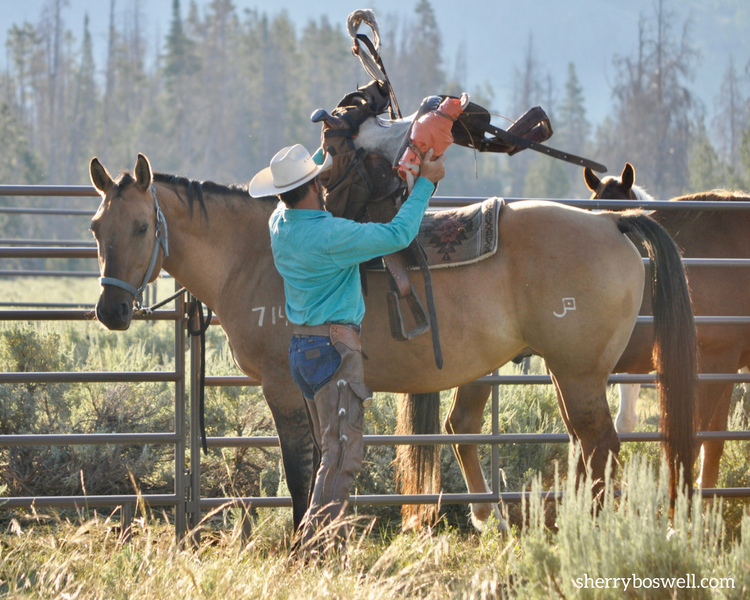 Saddle up for one heckuva vacation at a dude ranch.