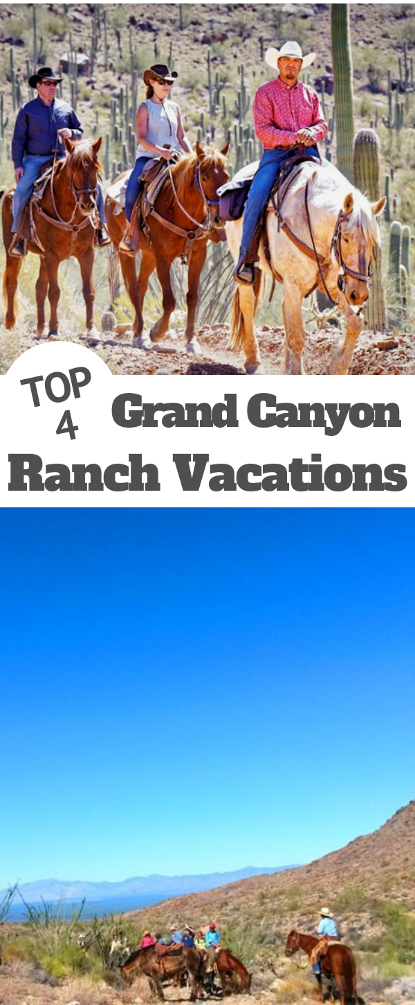 Why choose dude ranches for your stay in the Grand Canyon area? The DRA selects only the best ranches as members, you will enjoy top services & conditions.