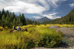 Hawley Mountain Ranch Summer Travel Destination