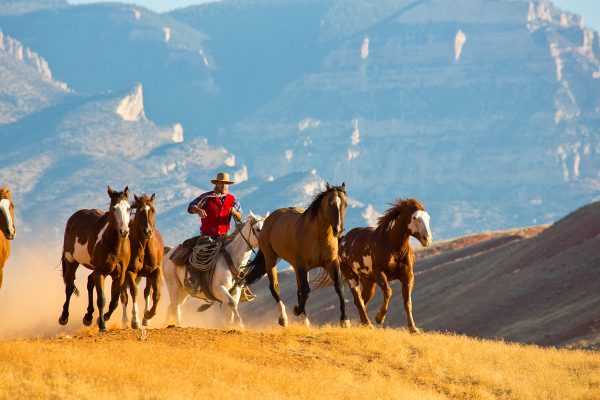 Wyoming's The Hideout Lodge Dude Ranch Vacations