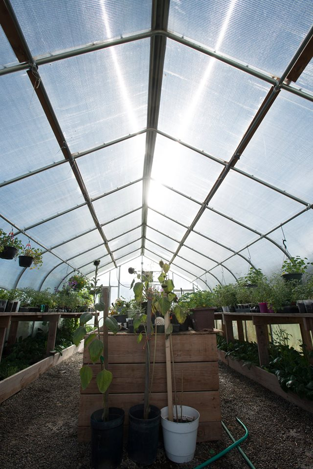 The High Lonesome Ranch Farm to Table Garden