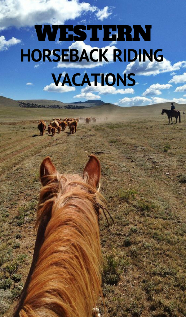 The Dude Ranchers' Association recommends the best horseback riding vacations in North America. At one of these carefully selected dude and guest ranches groups will experience equestrian activities and all sorts of outdoor adventures on a short stay of three or four nights, or a full week immersed in a Western trail riding destination. Guests have everything provided for them on all-inclusive stays including lodging, dining and activities.