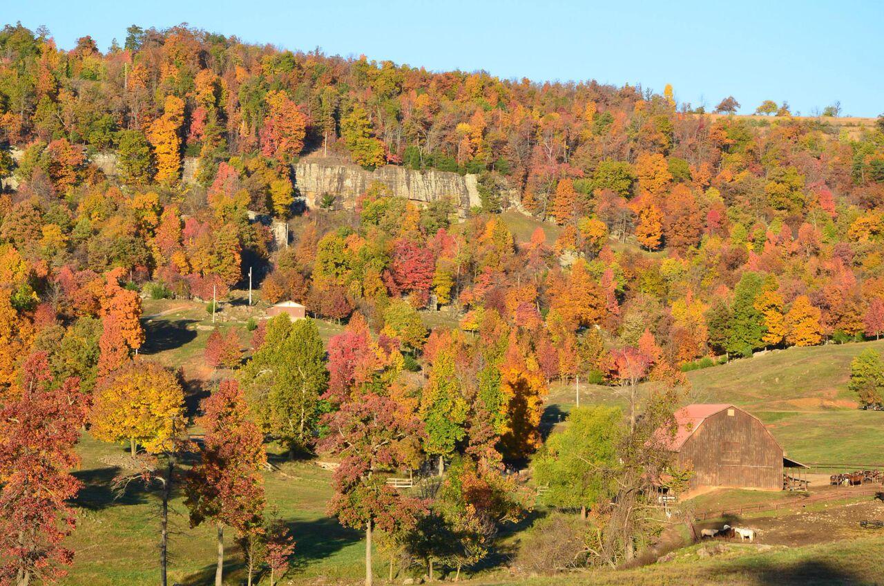 Horseshoe Barn Fall Colors
