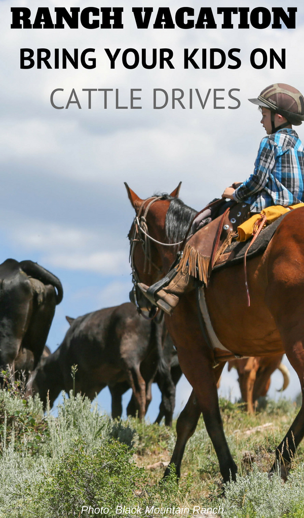 Can I take my children on a cattle drive?  Yes you can! Adults are not the only ones able to go on such adventures, your kids (ages 6 & up) can too.