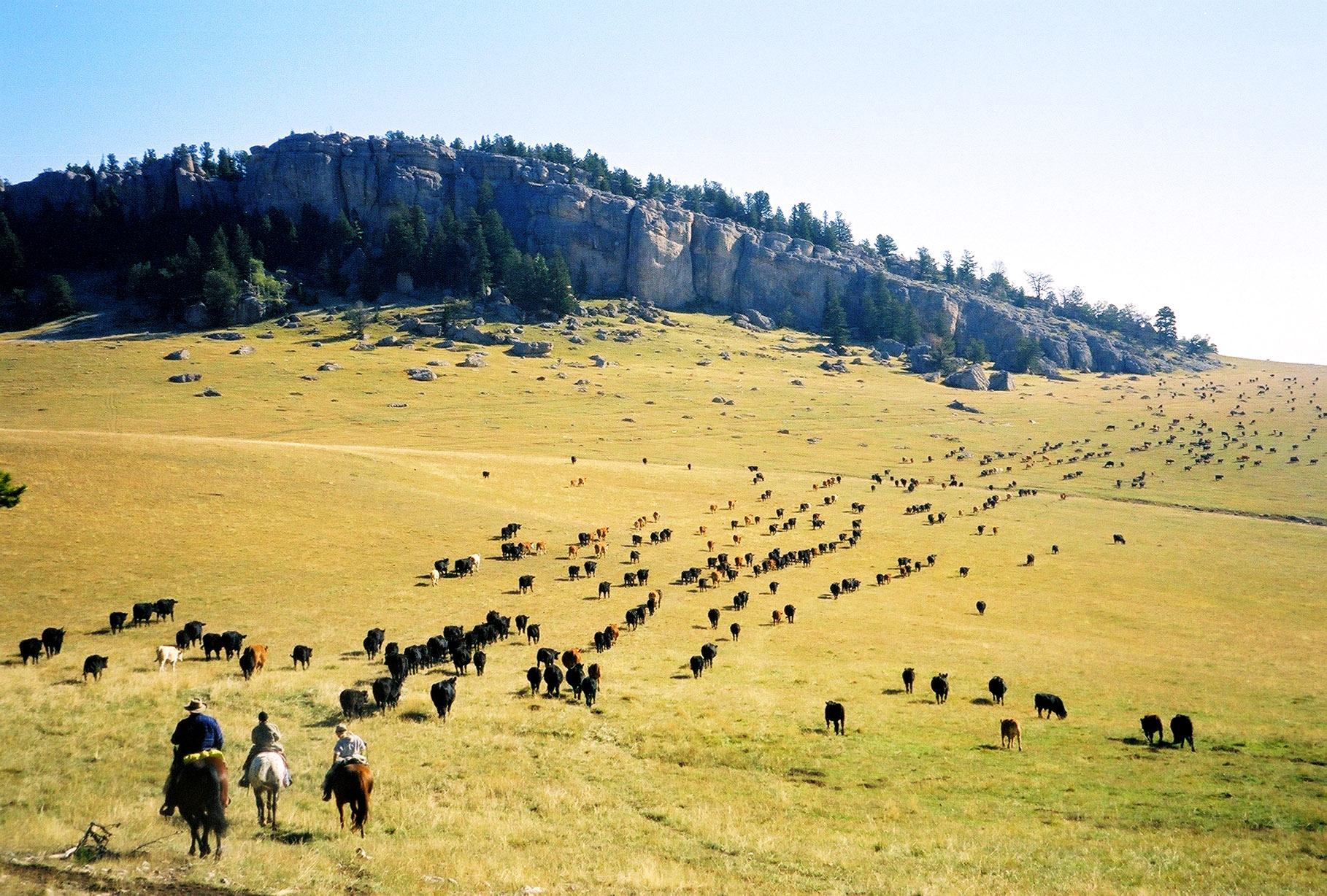 Wild West Adventure
