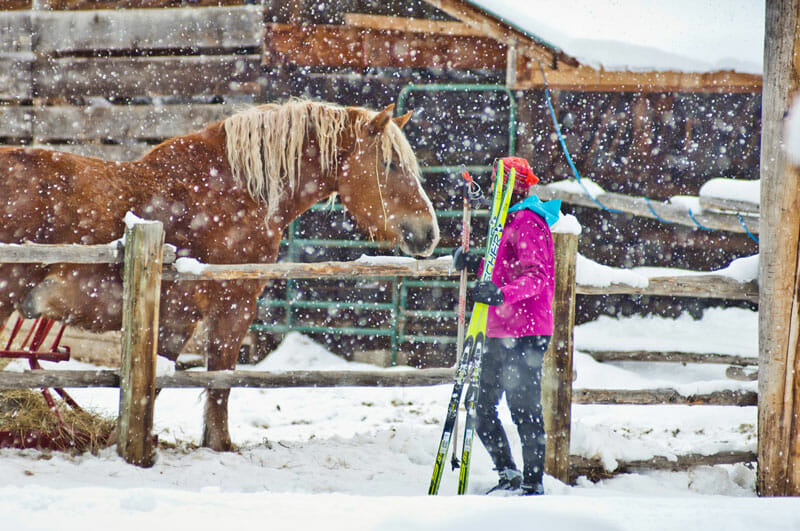 Lone-Mountain-Ski-and-Horse-Snow dude ranches