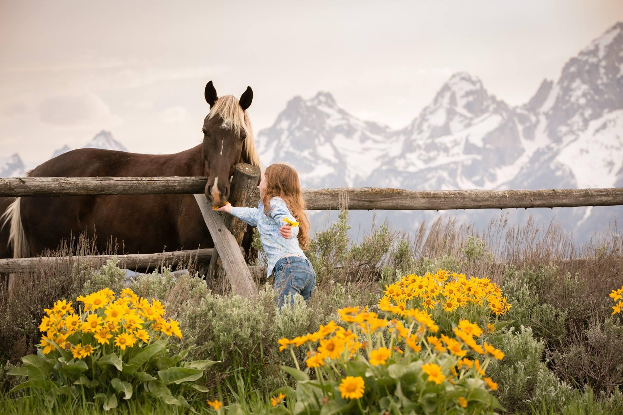 Grand Teton National Park Vacations