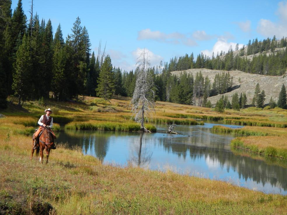 Nine Quarter Circle Ranch Montana Activities