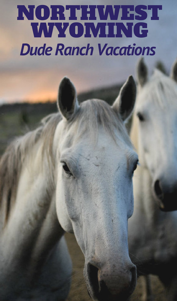 When you find yourself planning your next trip to the greater Yellowstone area or Jackson Hole in Northwest Wyoming here are some truly special hidden dude ranch vacations that are worth the trip alone. Whether you are looking for a family adventure vacation, a family reunion location, a corporate retreat getaway, or a unique wedding destination, these ranches are what you have been looking for.