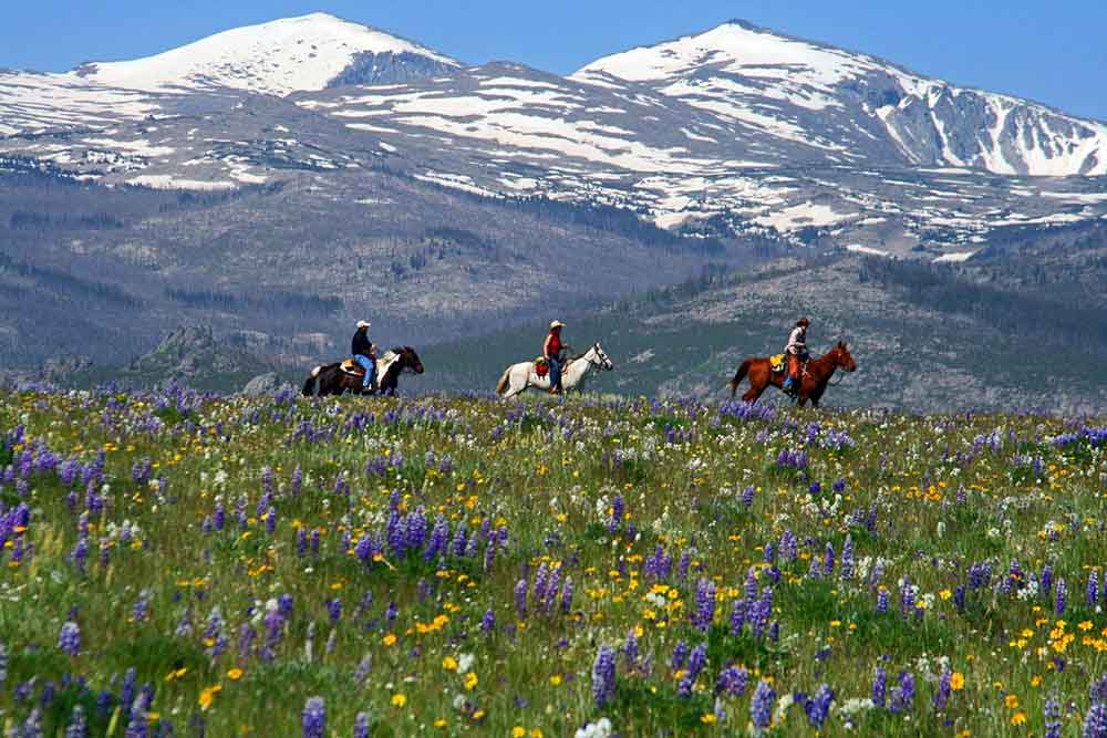 Paradise Guest Ranch Dude Ranches for the Experienced Rider