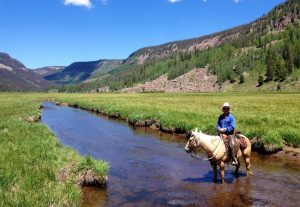 Rainbow Trout Dude Ranch