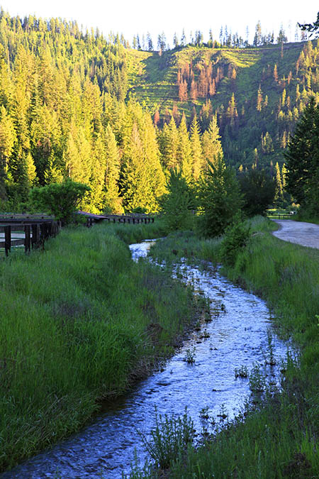 Red Horse Creek-1