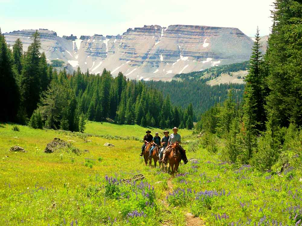 Red Rock Ranch Family Vacation Ideas