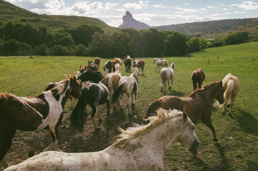 Smith Fork Horse Panoramas That Define Rustic Luxury
