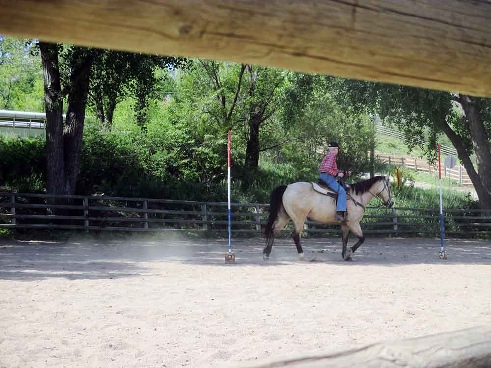Sylvan Dale Guest Ranch Rodeo Activities in Colorado