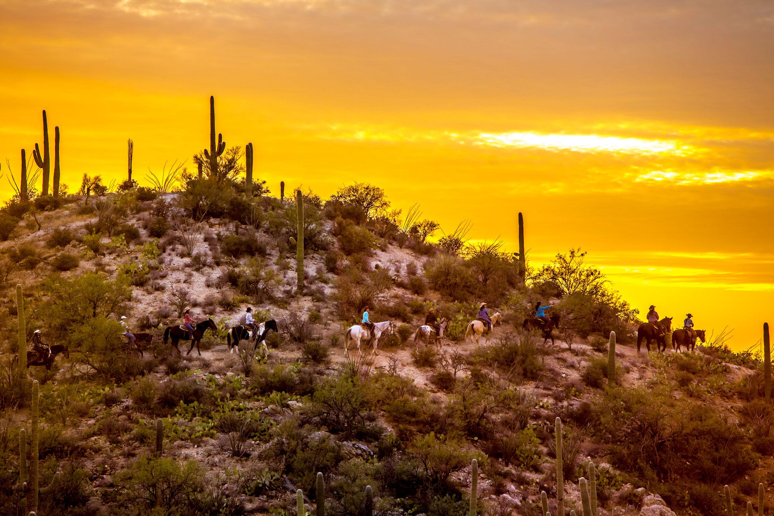 Arizona Ranch Vacation