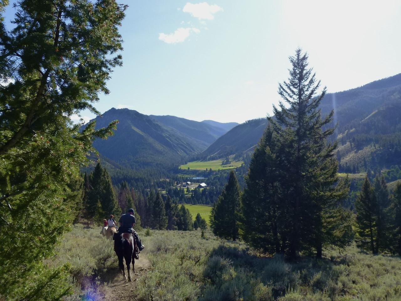 Western horseman- Diamond D Ranch
