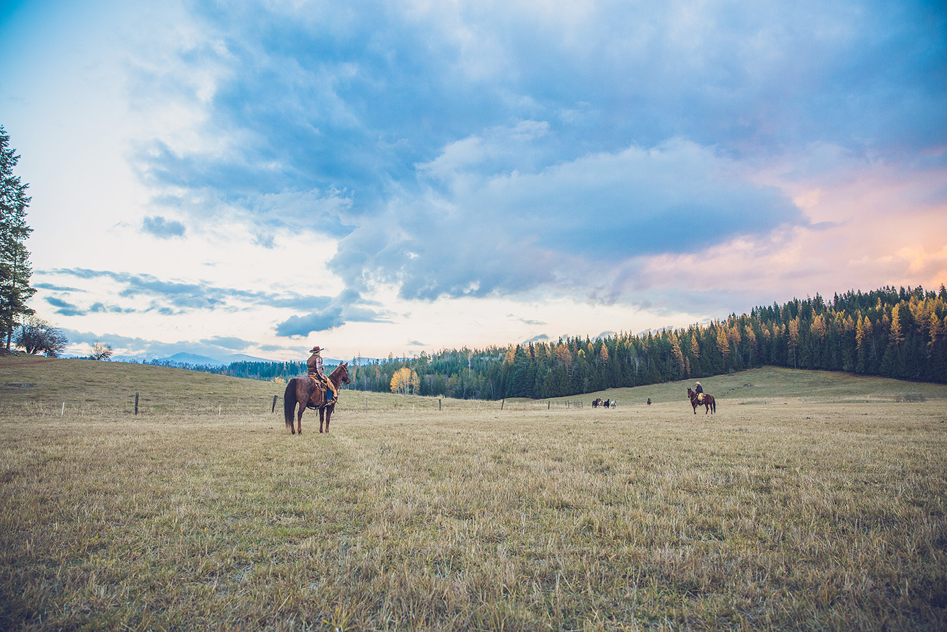 Western Pleasure  Idaho Dude Ranch Vacation