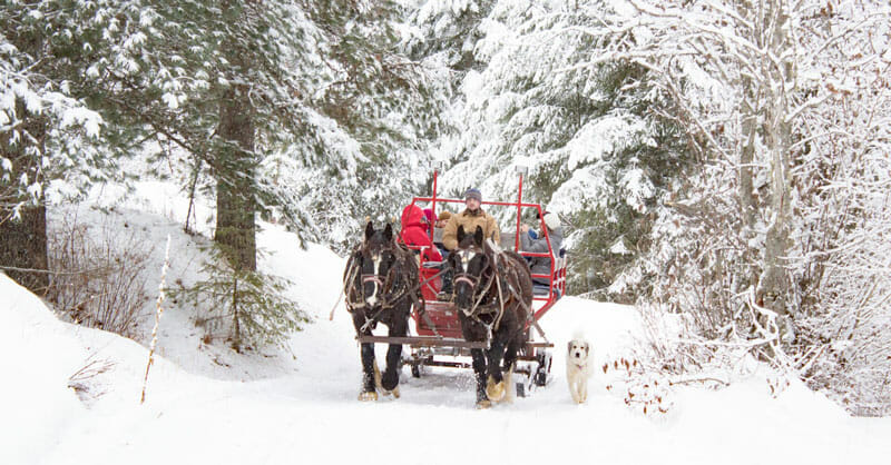 Western-Pleasure-Sleigh-Ride-Snow-2 dude ranches