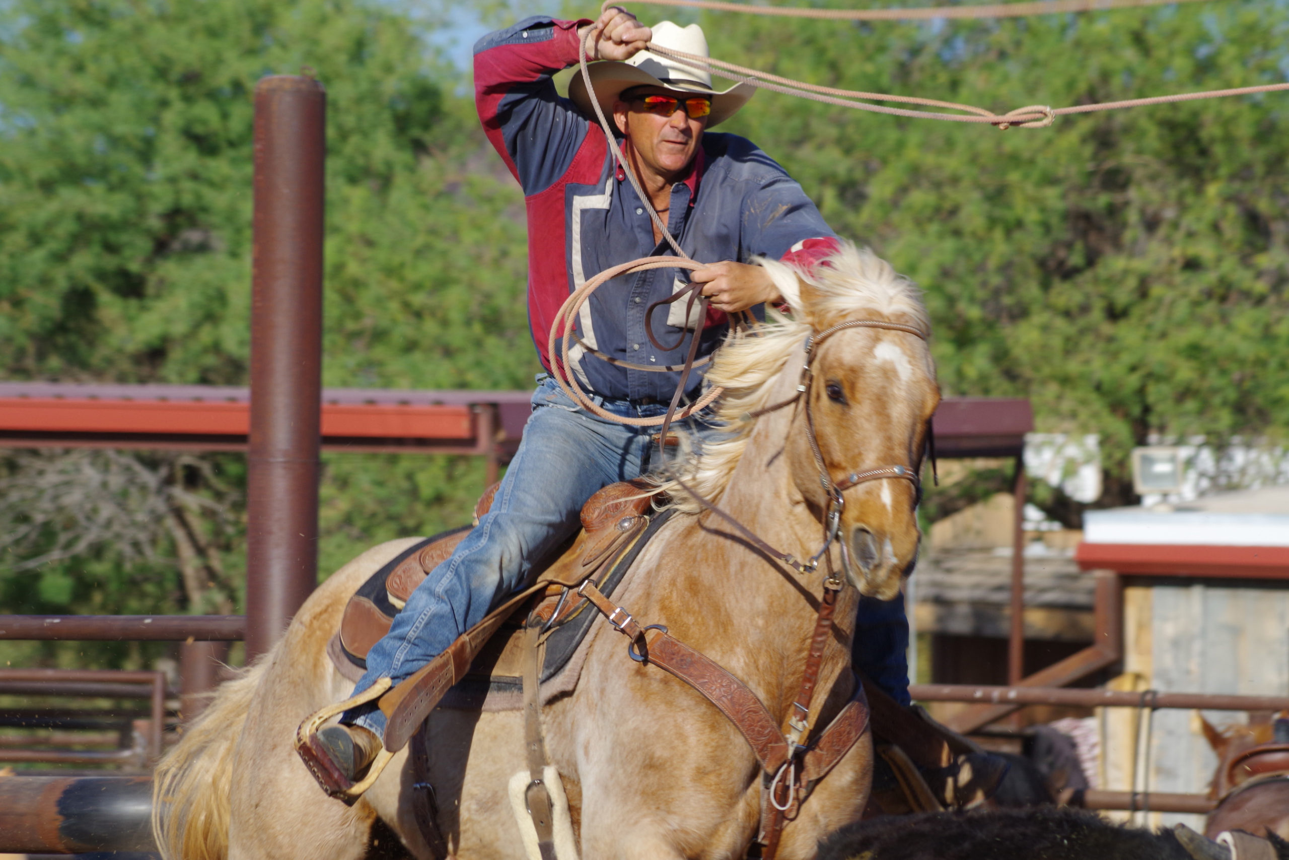 White Stallion Roping All-American Dude Ranch Experience