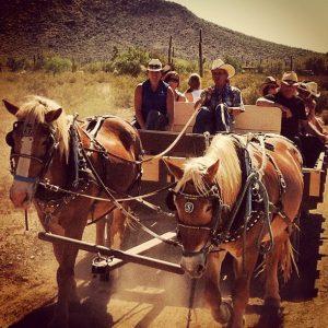 White Stallion Ranch Wagon Ride Horses