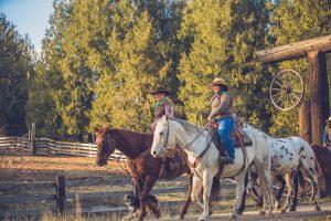 Western Pleasure Dude Ranch