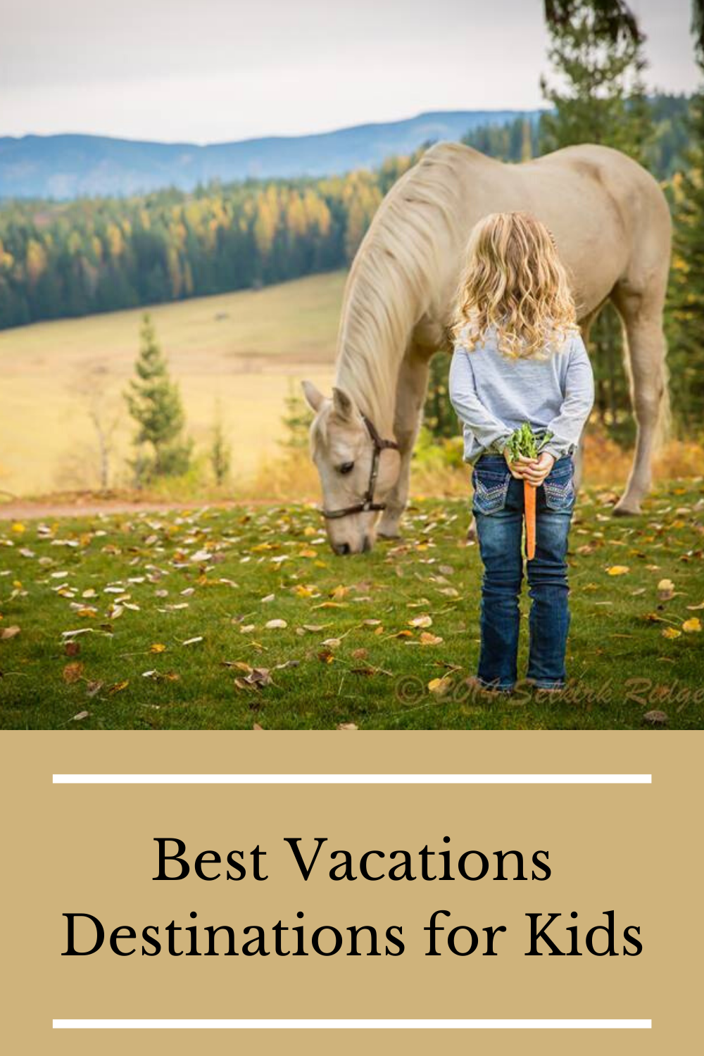 Best Vacations Destinations for Kids