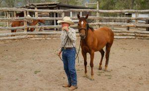 Zapata Ranch Cameron Schyver Clinic