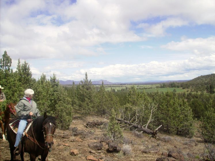 Trail ride with blue sky clouds and green trees