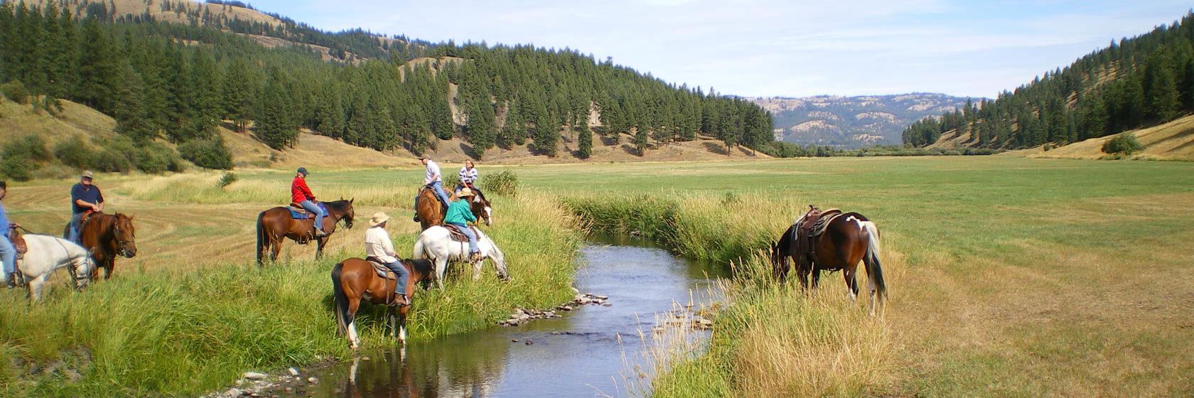 K Diamond K Creek trail ride