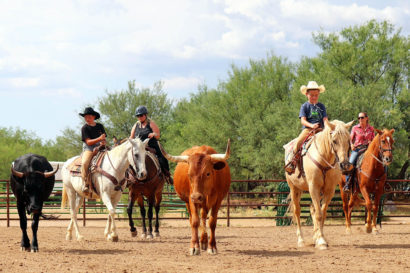 Tombstone Monument Ranch activities