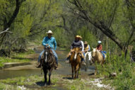 Circle Z Creek Trail Ride Family