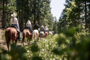 Greenhorn trail ride